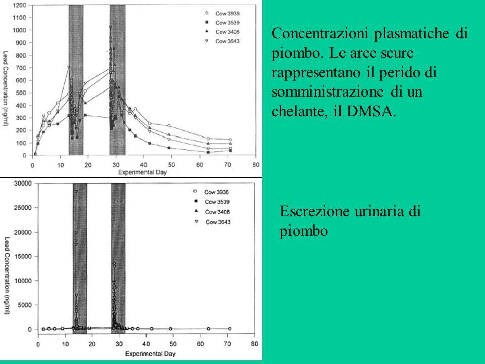 Concentrazioni plasmatiche di piombo. Le aree scure rappresentano il perido di somministrazione di un chelante, il DMSA. Escrezione urinaria di piombo