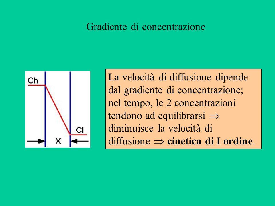 La velocità di diffusione dipende dal gradiente di concentrazione; nel tempo, le 2 concentrazioni tendono ad equilibrarsi diminuisce la velocità di di