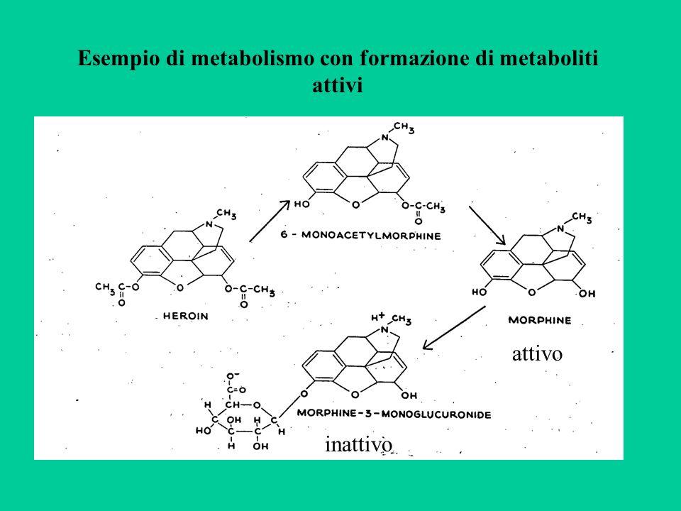 Esempio di metabolismo con formazione di metaboliti attivi attivo inattivo