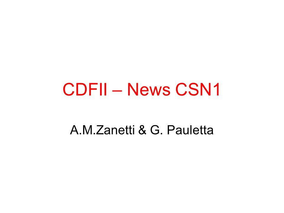 CDFII – News CSN1 A.M.Zanetti & G. Pauletta