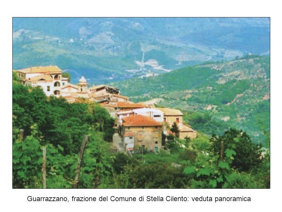 Pergamena a. 1009, attestante il toponimo di Guarrazzano (arch. Cava de Tirreni)
