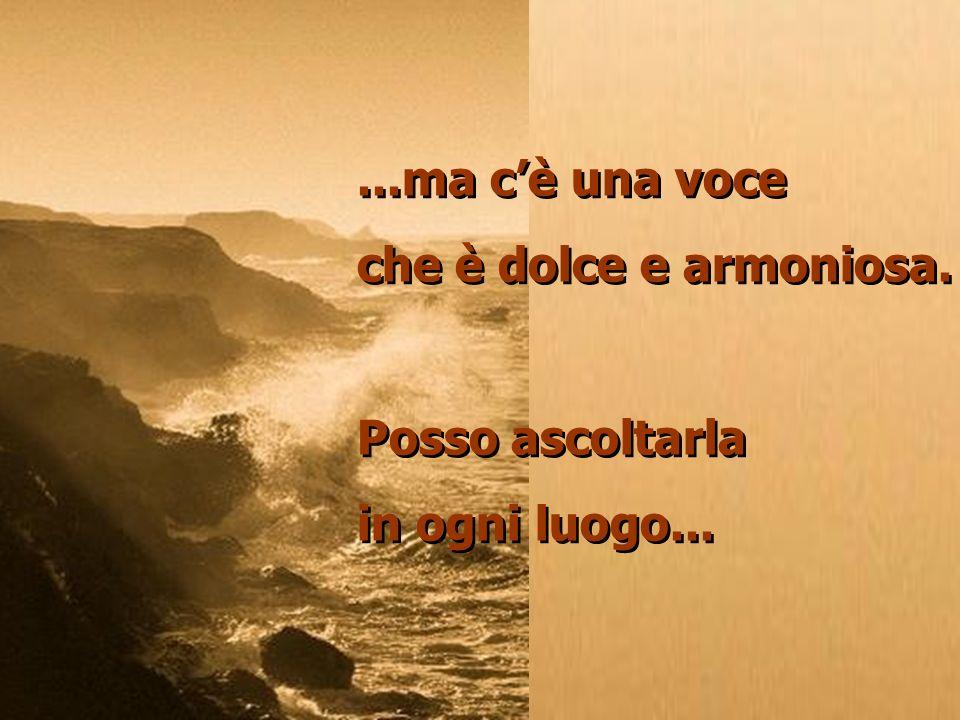 ...ma cè una voce che è dolce e armoniosa.