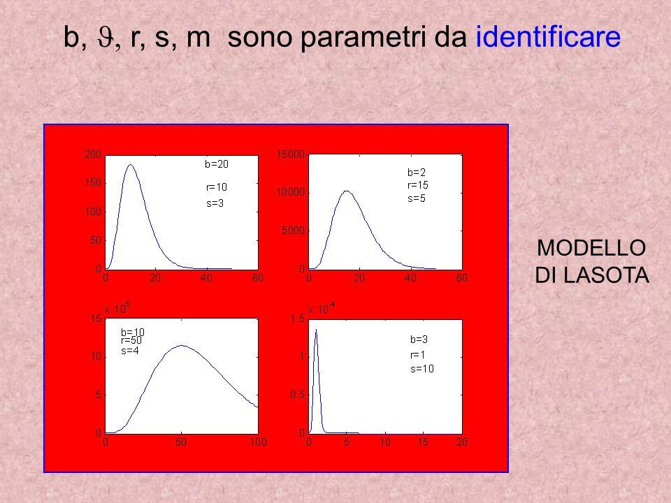 b, r, s, m sono parametri da identificare MODELLO DI LASOTA