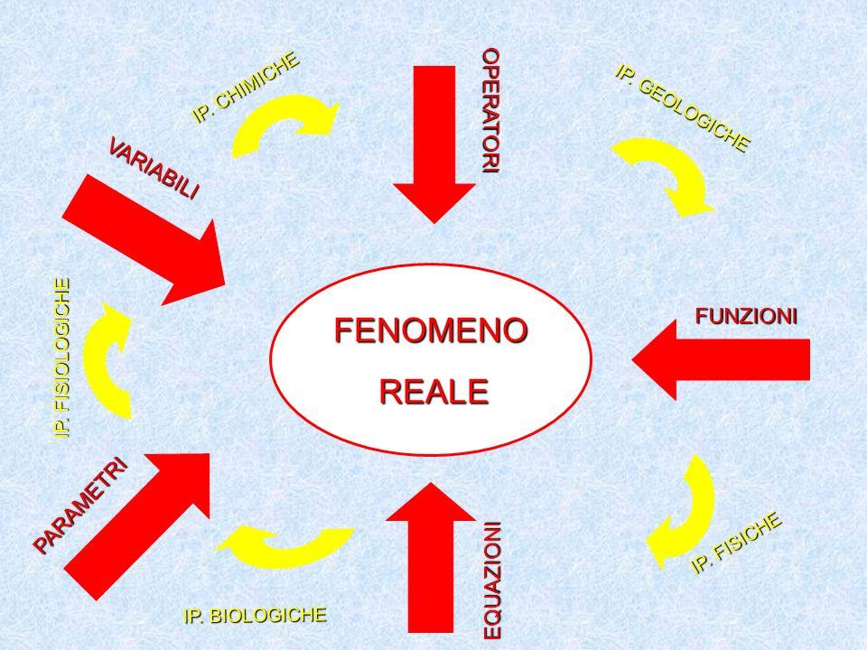 FENOMENOREALE VARIABILI OPERATORI FUNZIONI EQUAZIONI PARAMETRI IP. CHIMICHE IP. GEOLOGICHE IP. FISICHE IP. BIOLOGICHE IP. FISIOLOGICHE