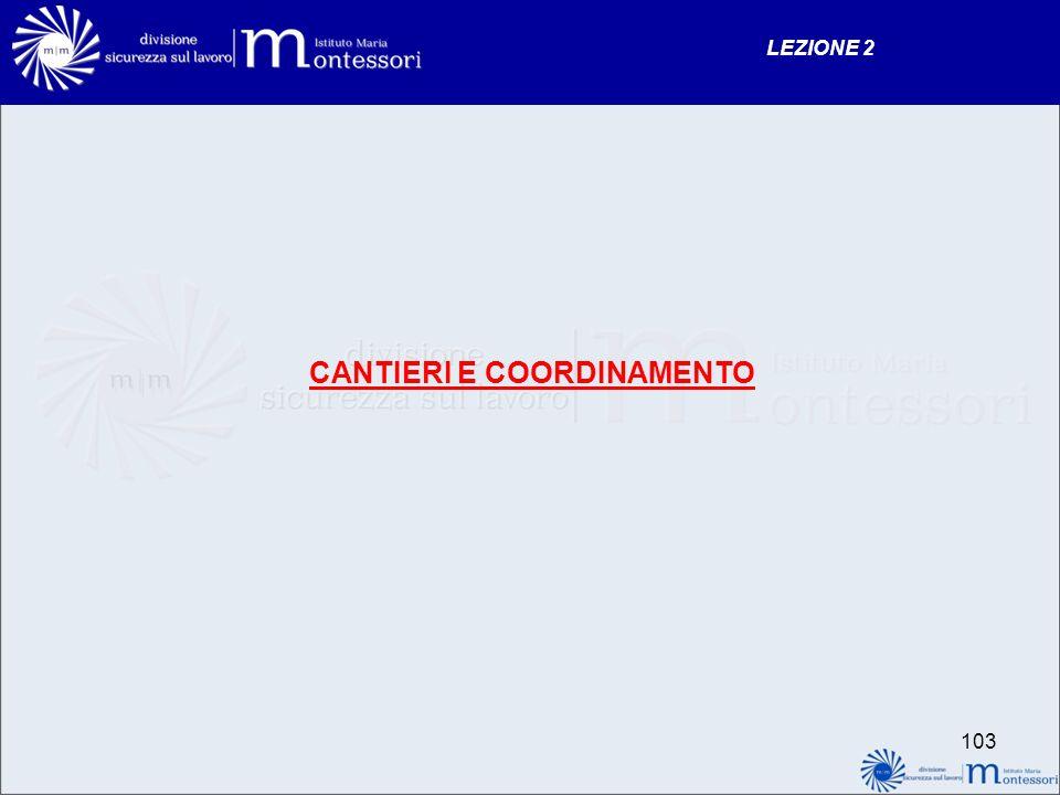 CANTIERI E COORDINAMENTO LEZIONE 2 103