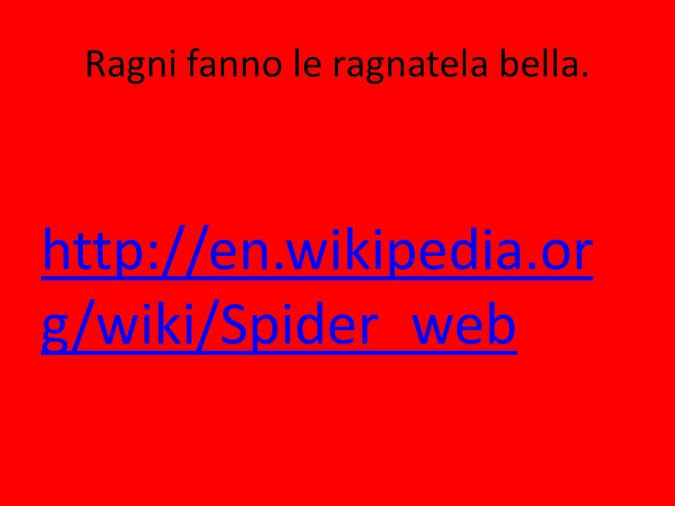 Ragni fanno le ragnatela bella. http://en.wikipedia.or g/wiki/Spider_web