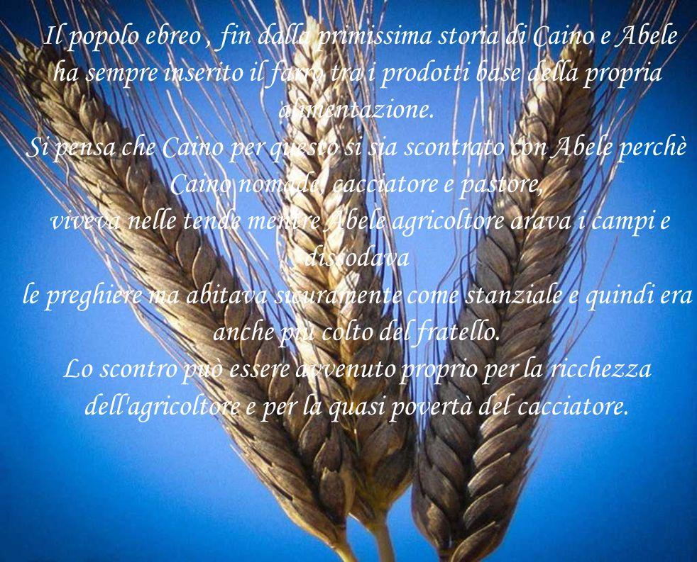 Il popolo ebreo, fin dalla primissima storia di Caino e Abele ha sempre inserito il farro tra i prodotti base della propria alimentazione.