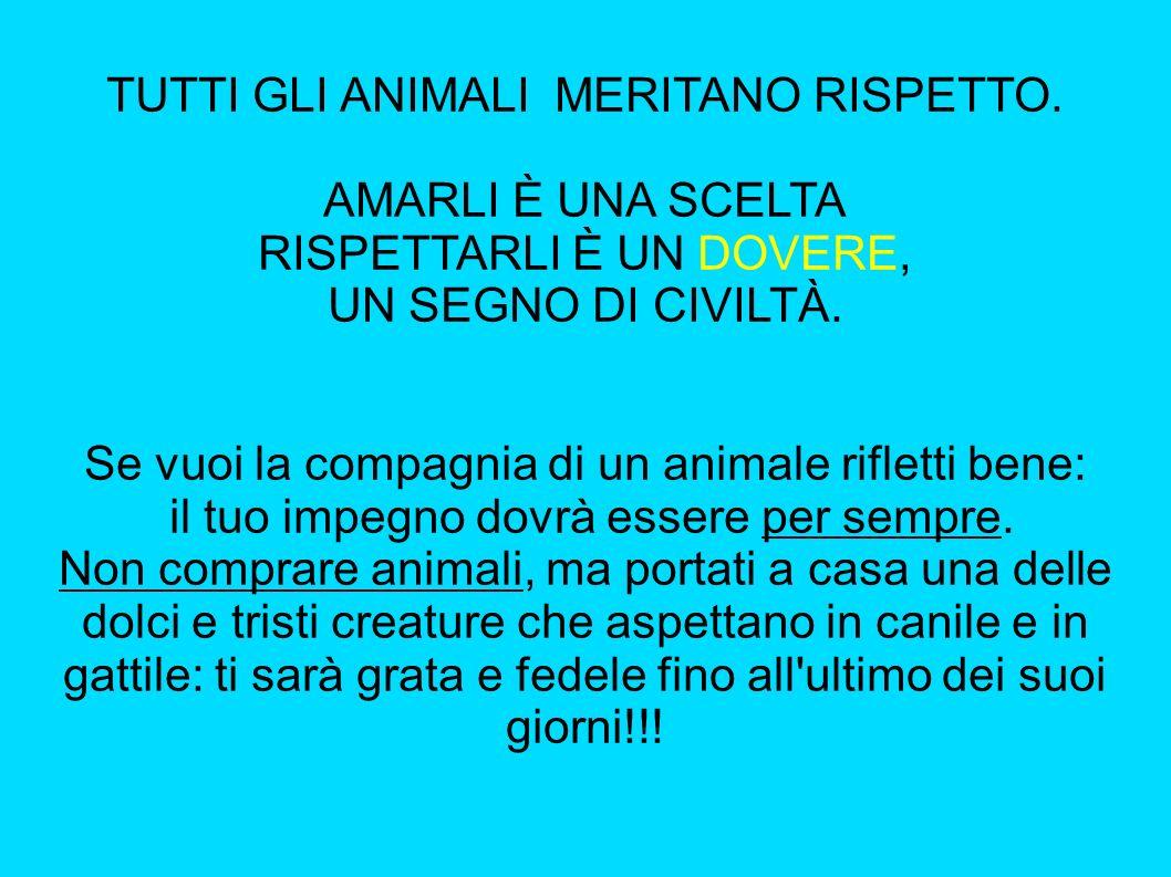 TUTTI GLI ANIMALI MERITANO RISPETTO. AMARLI È UNA SCELTA RISPETTARLI È UN DOVERE, UN SEGNO DI CIVILTÀ. Se vuoi la compagnia di un animale rifletti ben