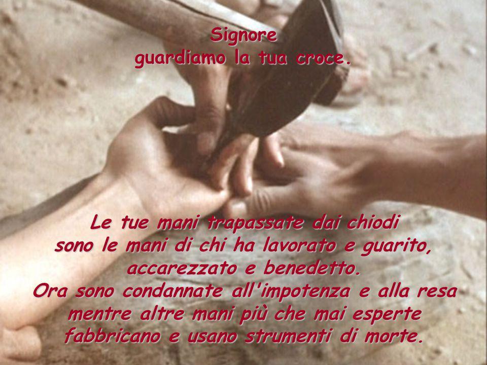 Signore guardiamo la tua croce. Le tue mani trapassate dai chiodi sono le mani di chi ha lavorato e guarito, accarezzato e benedetto. Ora sono condann