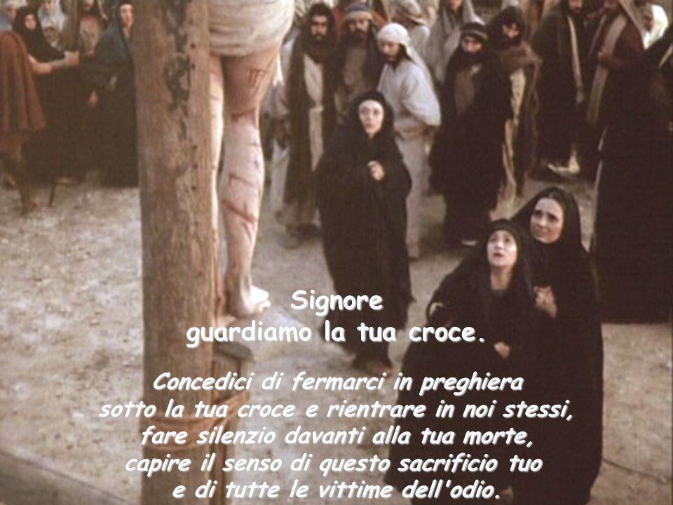 Signore guardiamo la tua croce. Concedici di fermarci in preghiera sotto la tua croce e rientrare in noi stessi, fare silenzio davanti alla tua morte,
