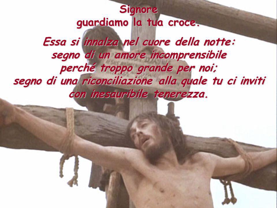 Signore guardiamo la tua croce. Essa si innalza nel cuore della notte: segno di un amore incomprensibile perché troppo grande per noi; segno di una ri