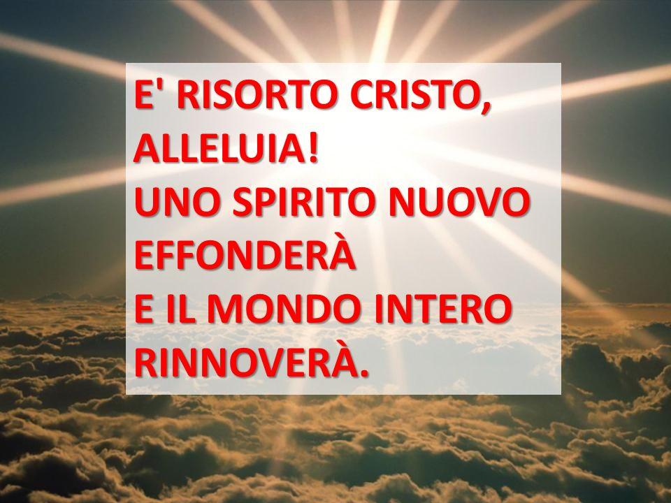 E RISORTO CRISTO, ALLELUIA! UNO SPIRITO NUOVO EFFONDERÀ E IL MONDO INTERO RINNOVERÀ.
