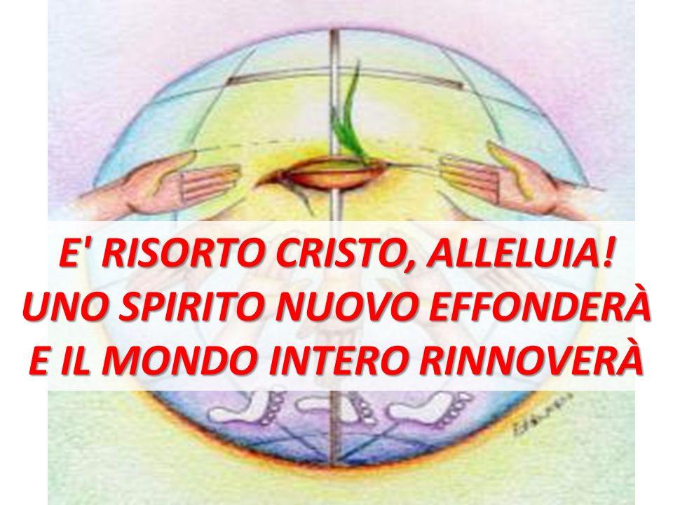 E RISORTO CRISTO, ALLELUIA! UNO SPIRITO NUOVO EFFONDERÀ E IL MONDO INTERO RINNOVERÀ