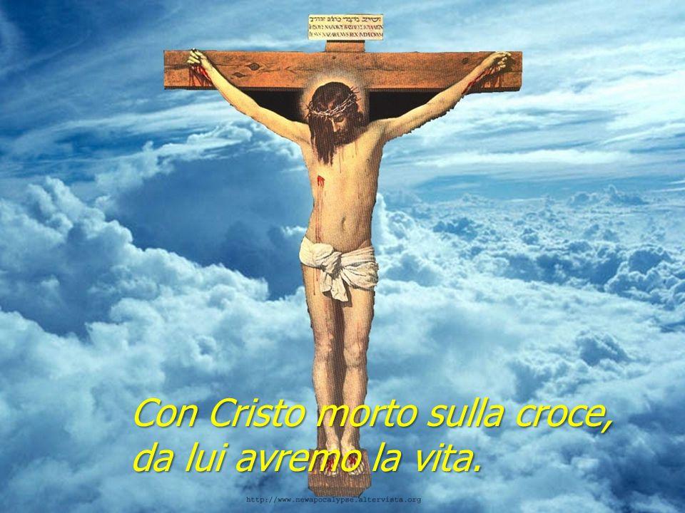 Con Cristo morto sulla croce, da lui avremo la vita.
