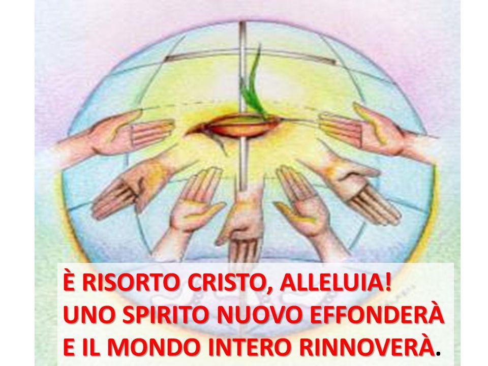 Beati gli invitati alla Cena del Signore.Ecco lagnello di Dio, che toglie i peccati del mondo.
