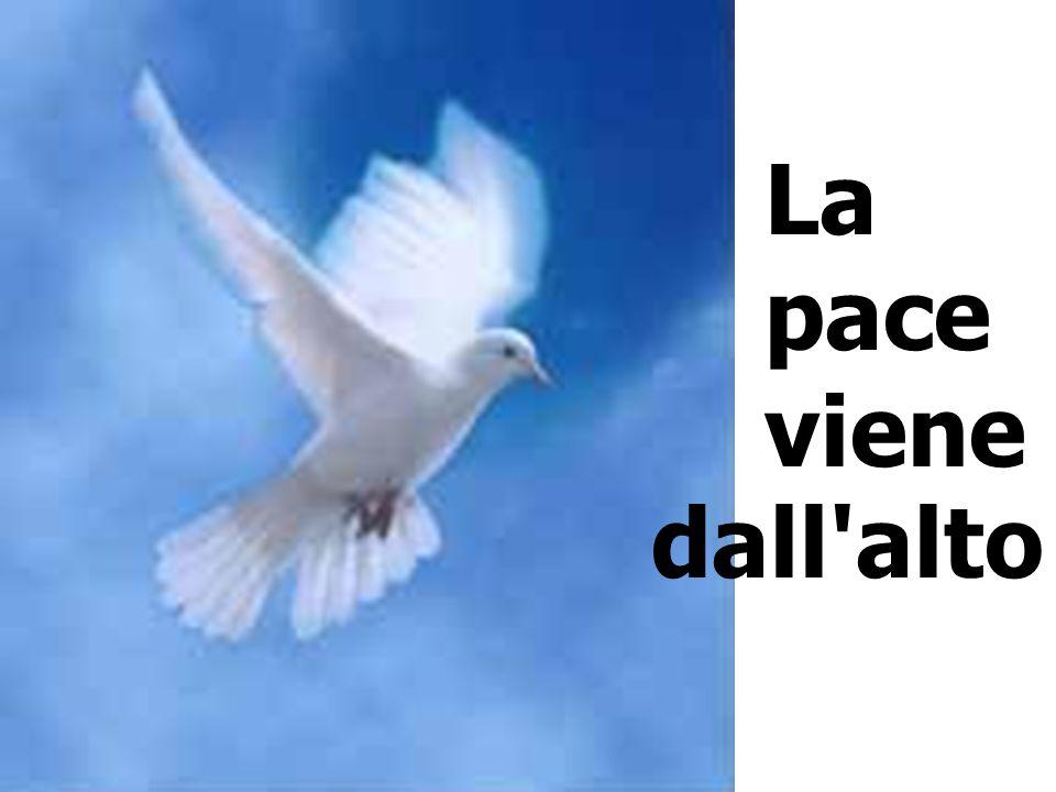 La pace viene dall'alto