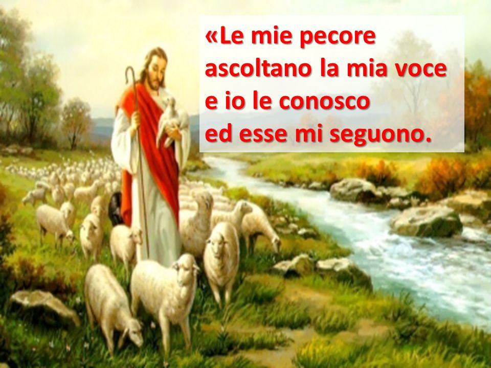«Le mie pecore ascoltano la mia voce e io le conosco ed esse mi seguono.