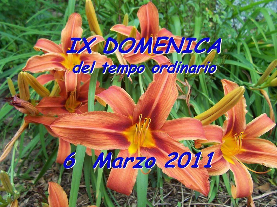 IX DOMENICA del tempo ordinario IX DOMENICA del tempo ordinario 6 Marzo 2011
