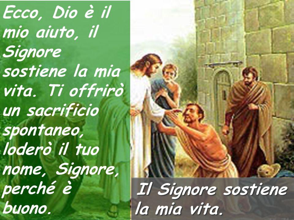 Poiché stranieri contro di me sono insorti e prepotenti insidiano la mia vita; non pongono Dio davanti ai loro occhi. Il Signore sostiene la mia vita.
