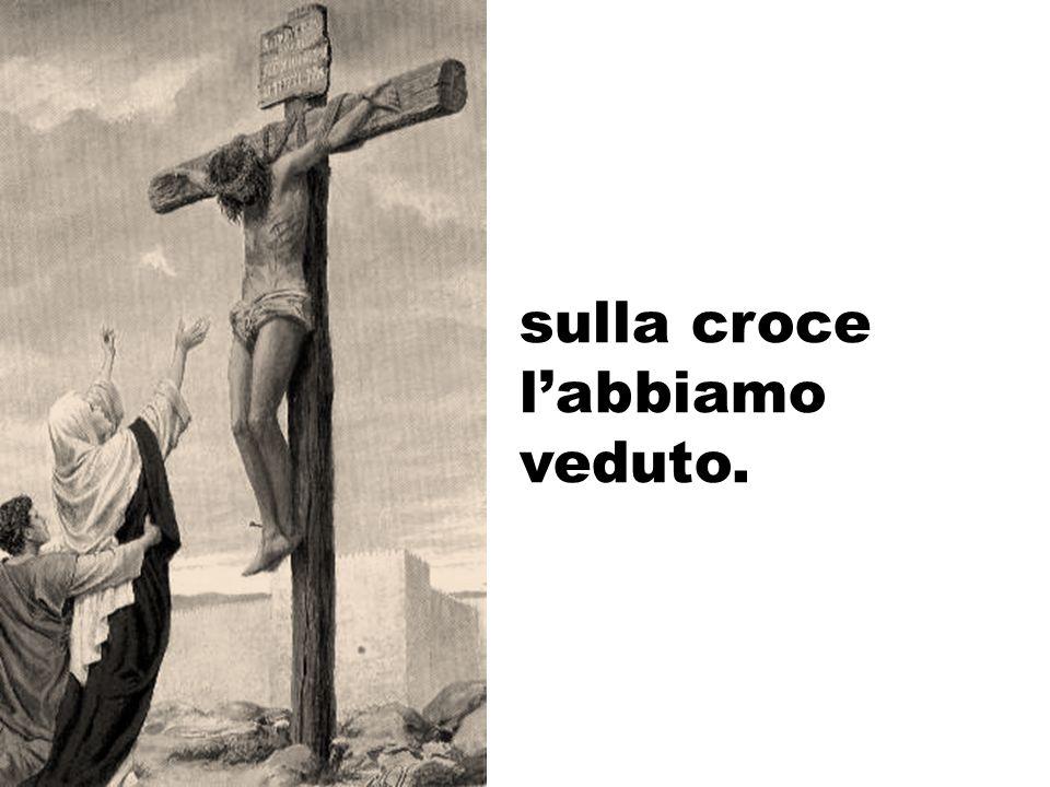 sulla croce labbiamo veduto.