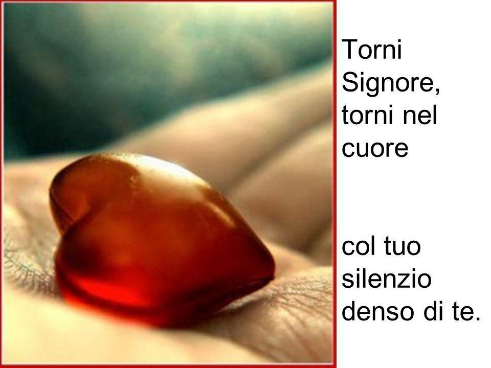 Torni Signore, torni nel cuore col tuo silenzio denso di te.