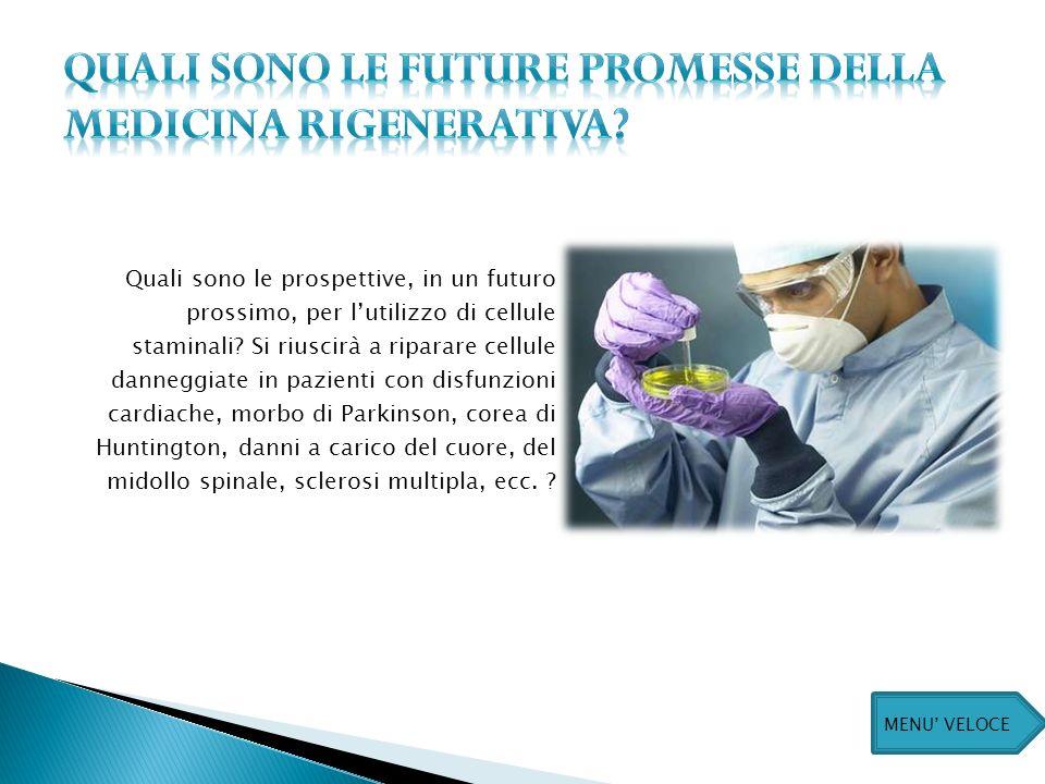 Quali sono le prospettive, in un futuro prossimo, per lutilizzo di cellule staminali.