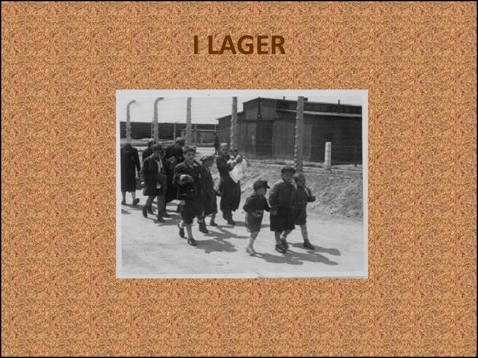 I LAGER Nel lager di Auschwitz il numero di matricola attribuito a ciascun deportato veniva anche tatuato sullavambraccio sinistro. Tutti i prigionier