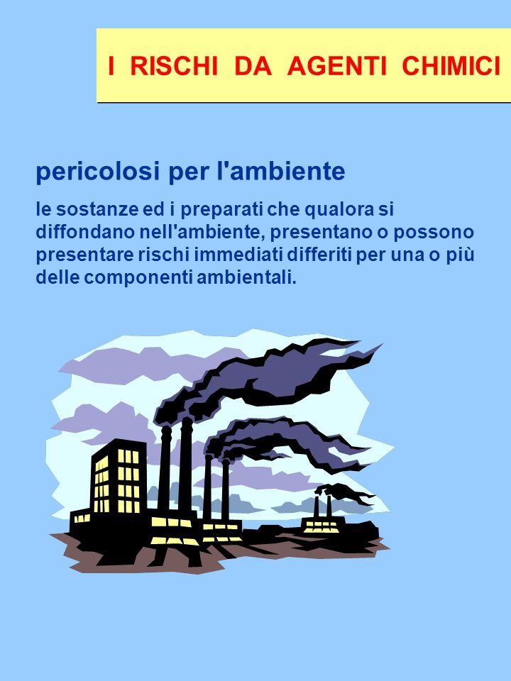 pericolosi per l'ambiente le sostanze ed i preparati che qualora si diffondano nell'ambiente, presentano o possono presentare rischi immediati differi