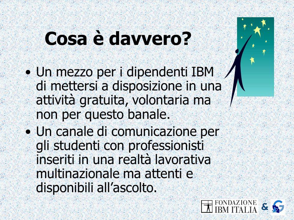 Cosa è davvero? Un mezzo per i dipendenti IBM di mettersi a disposizione in una attività gratuita, volontaria ma non per questo banale. Un canale di c