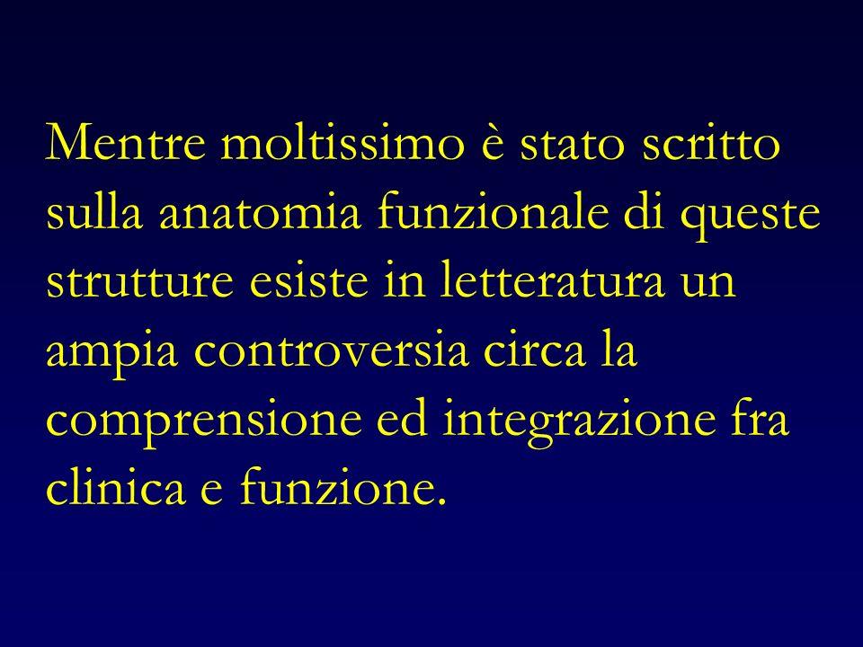 Mentre moltissimo è stato scritto sulla anatomia funzionale di queste strutture esiste in letteratura un ampia controversia circa la comprensione ed integrazione fra clinica e funzione.
