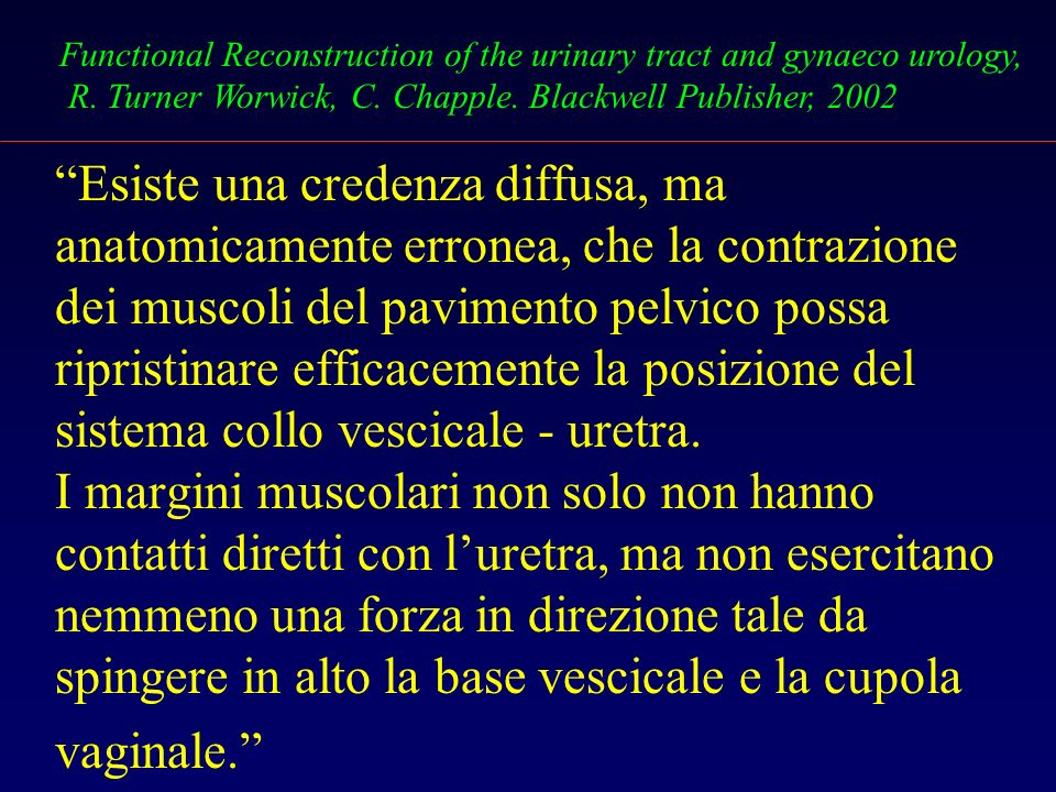 Esiste una credenza diffusa, ma anatomicamente erronea, che la contrazione dei muscoli del pavimento pelvico possa ripristinare efficacemente la posizione del sistema collo vescicale - uretra.