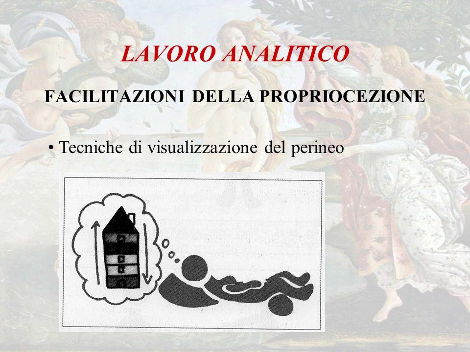 LAVORO ANALITICO FACILITAZIONI DELLA PROPRIOCEZIONE Tecniche di visualizzazione del perineo