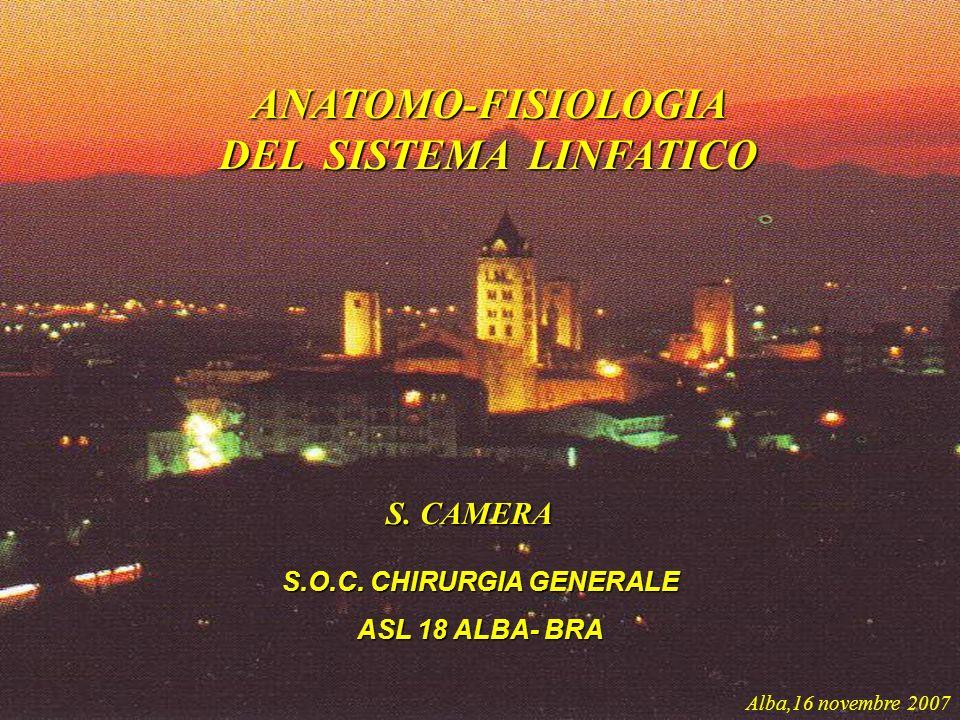 S.O.C. CHIRURGIA GENERALE ASL 18 ALBA- BRA S. CAMERA Alba,16 novembre 2007 ANATOMO-FISIOLOGIA DEL SISTEMA LINFATICO