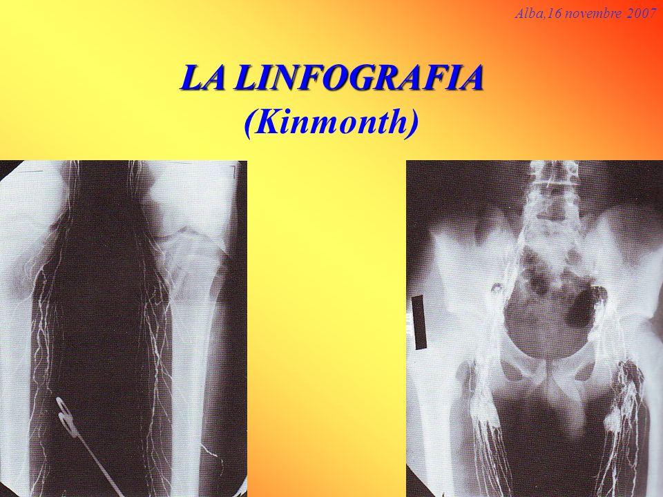 LA LINFOGRAFIA LA LINFOGRAFIA (Kinmonth) Alba,16 novembre 2007
