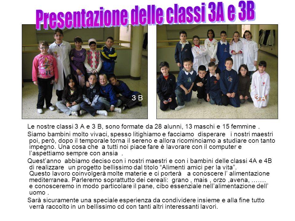 Le nostre classi 3 A e 3 B, sono formate da 28 alunni, 13 maschi e 15 femmine.
