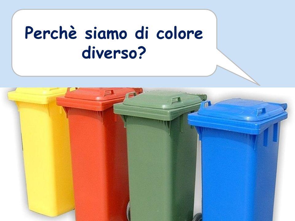 Perchè siamo di colore diverso?