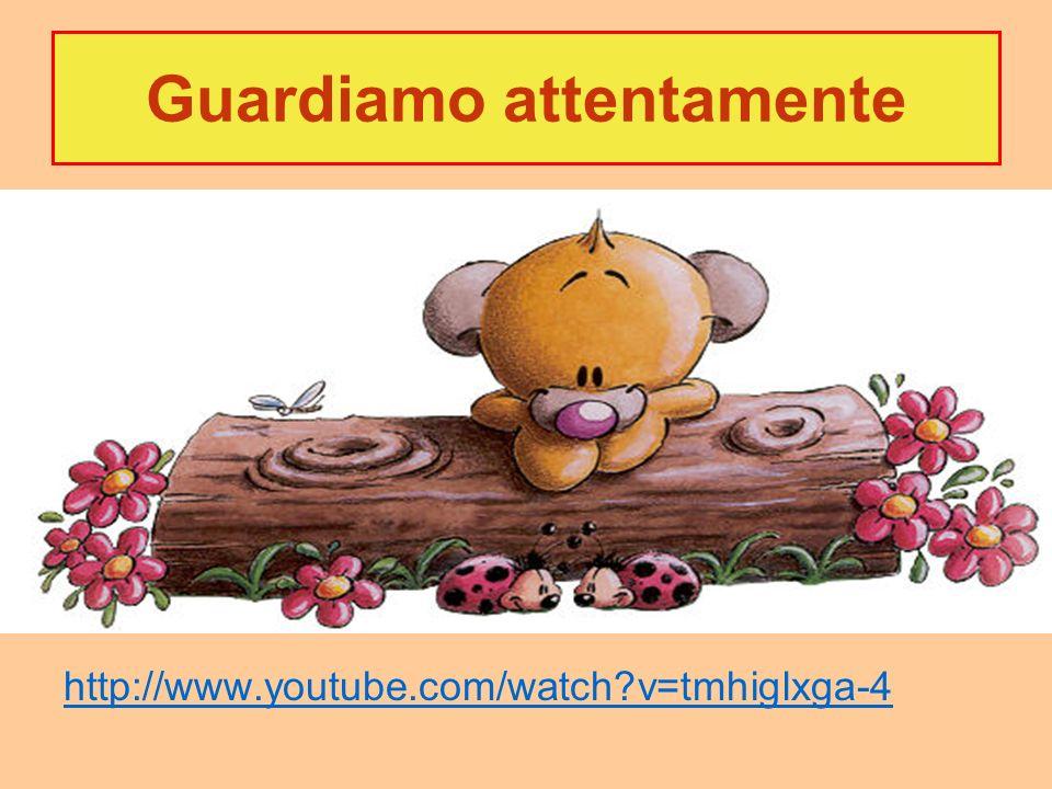 Guardiamo attentamente http://www.youtube.com/watch?v=tmhiglxga-4