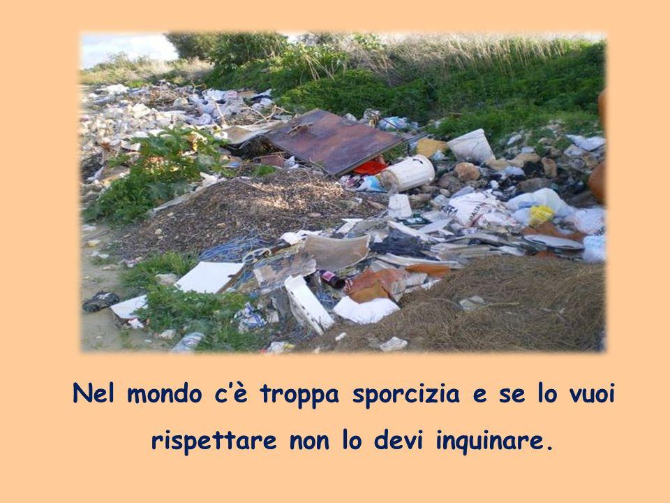 Nel mondo cè troppa sporcizia e se lo vuoi rispettare non lo devi inquinare.