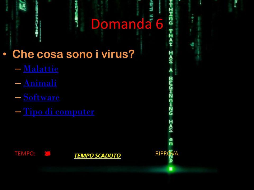 Domanda 6 Che cosa sono i virus? – Malattie Malattie – Animali Animali – Software Software – Tipo di computer Tipo di computer TEMPO:20191817161514131