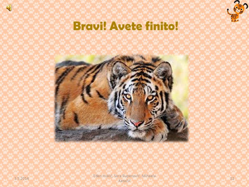 Bravi! Avete finito! 3.5.2014 12 Eden Hukić, Sara Rupenović, Mihaela Katačić
