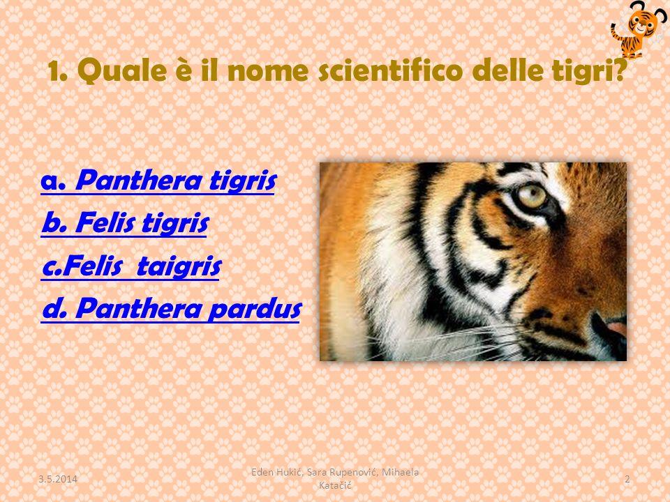 1. Quale è il nome scientifico delle tigri? a. Panthera tigris b. Felis tigris c.Felis taigris d. Panthera pardus 3.5.2014 2 Eden Hukić, Sara Rupenovi