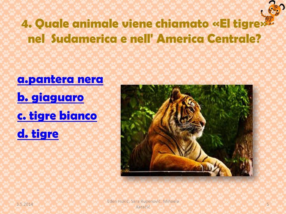 4. Quale animale viene chiamato «El tigre» nel Sudamerica e nell' America Centrale? a.pantera nera b. giaguaro c. tigre bianco d. tigre 3.5.2014 5 Ede