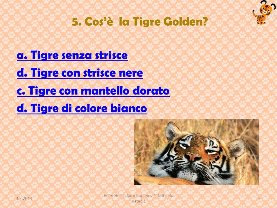 5.Cosè la Tigre Golden. a. Tigre senza strisce d.