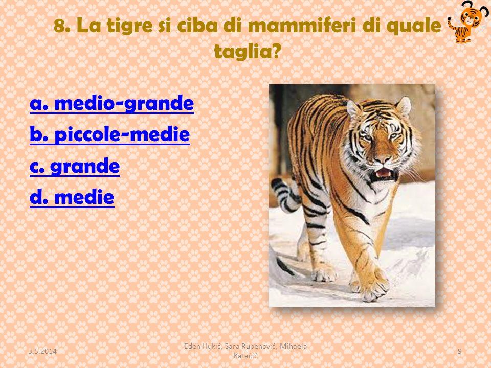 8.La tigre si ciba di mammiferi di quale taglia. a.