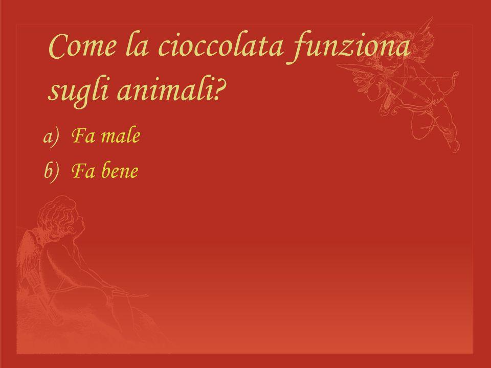 Come la cioccolata funziona sugli animali? a) Fa male b) Fa bene