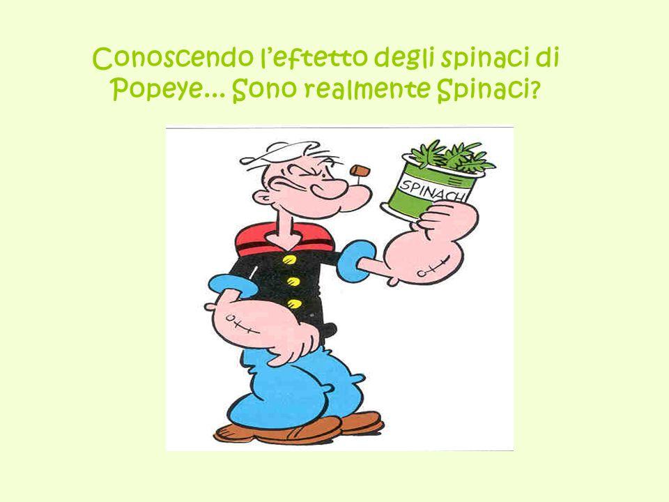 Conoscendo leftetto degli spinaci di Popeye... Sono realmente Spinaci?