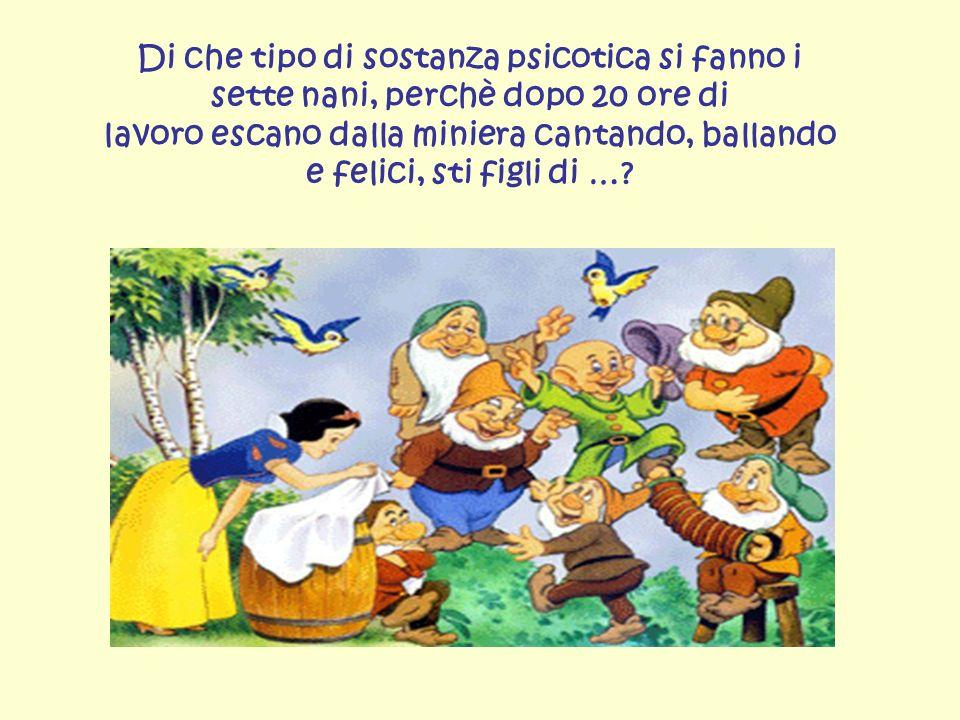 Di che tipo di sostanza psicotica si fanno i sette nani, perchè dopo 20 ore di lavoro escano dalla miniera cantando, ballando e felici, sti figli di …