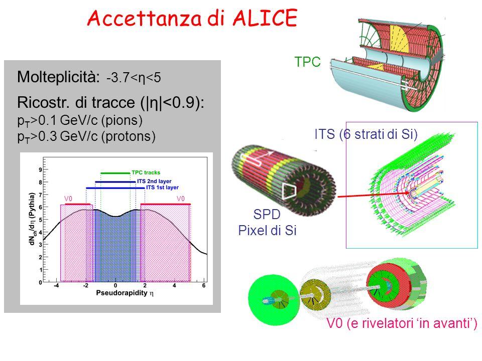 Accettanza di ALICE Molteplicità: -3.7<η<5 Ricostr. di tracce (|η|<0.9): p T >0.1 GeV/c (pions) p T >0.3 GeV/c (protons) V0 TPC SPD Pixel di Si V0 (e