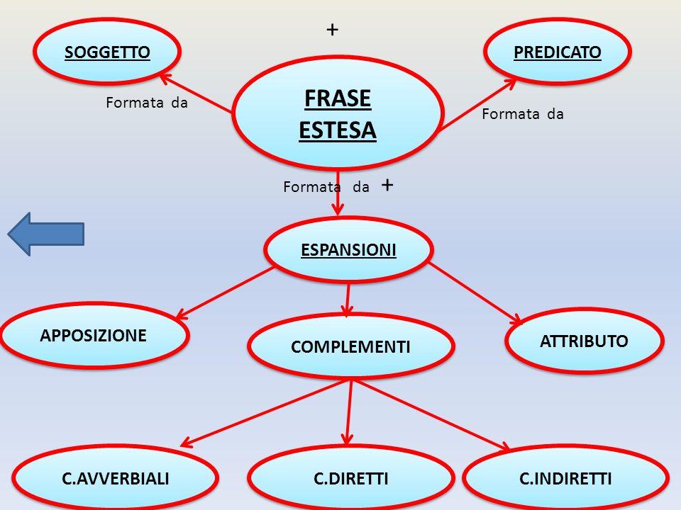FRASE ESTESA SOGGETTO PREDICATO ESPANSIONI APPOSIZIONE ATTRIBUTO COMPLEMENTI C.AVVERBIALI C.DIRETTI C.INDIRETTI Formata da + Formata da +