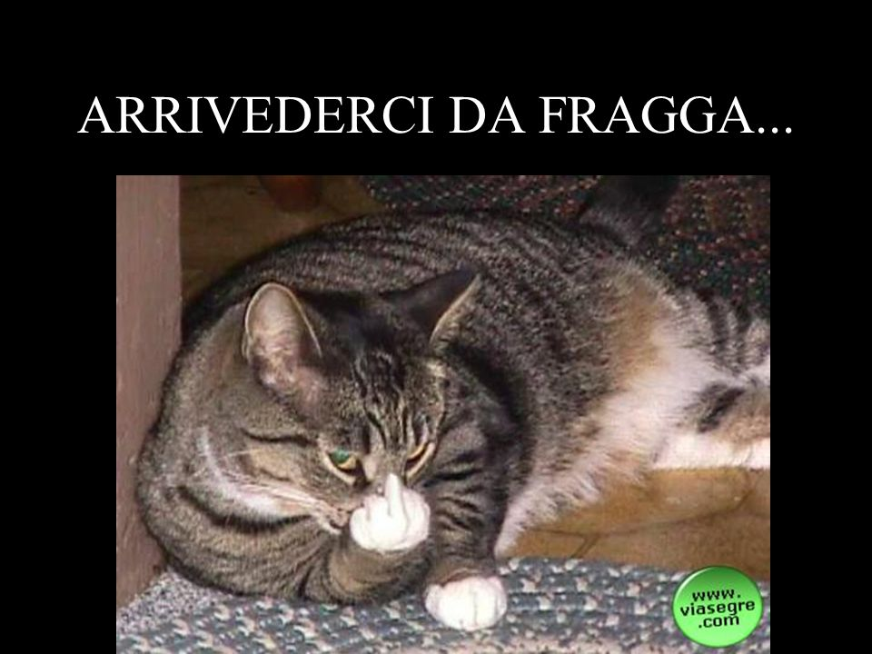 ARRIVEDERCI DA FRAGGA...